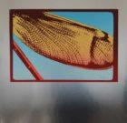 SILKSCREEN Peter R. Bakker 'Fleece Wing' 1977